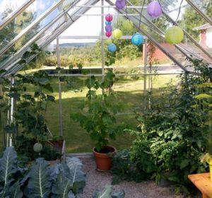 växthuset prunkar